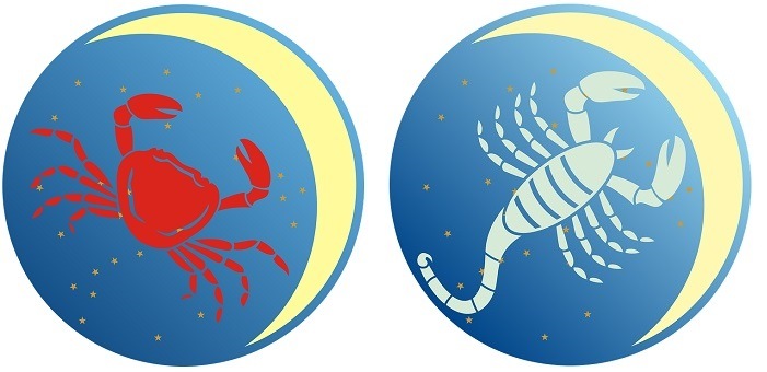 Rak i skorpija